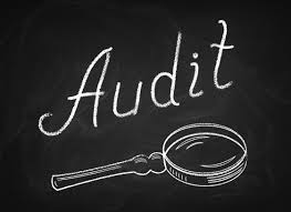 IRS AUDITS AND MILLIONAIRES